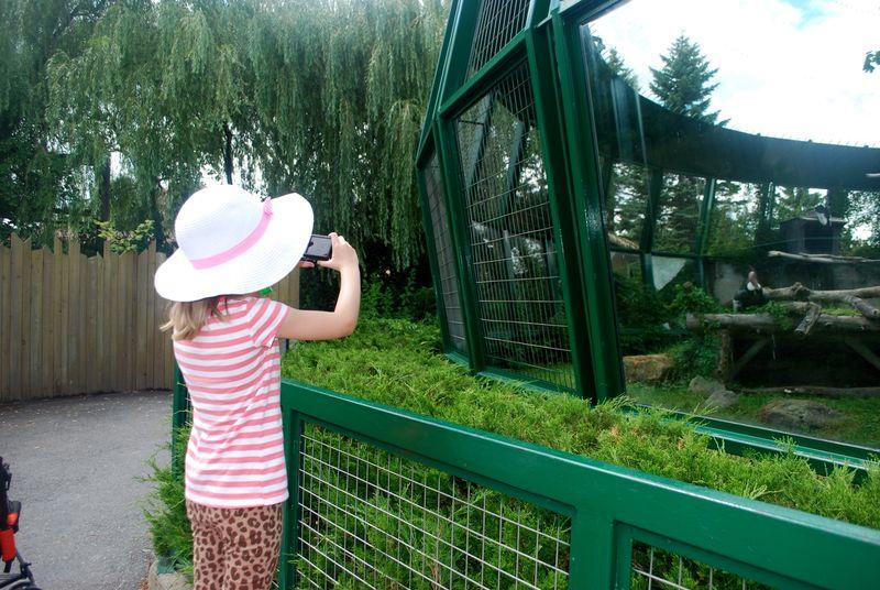 Granby Zoo 6