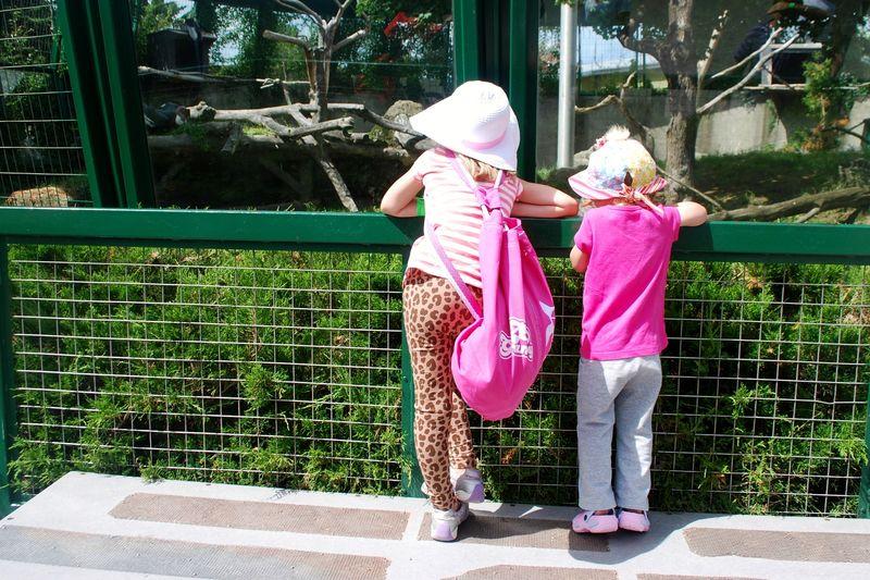 Granby Zoo 5