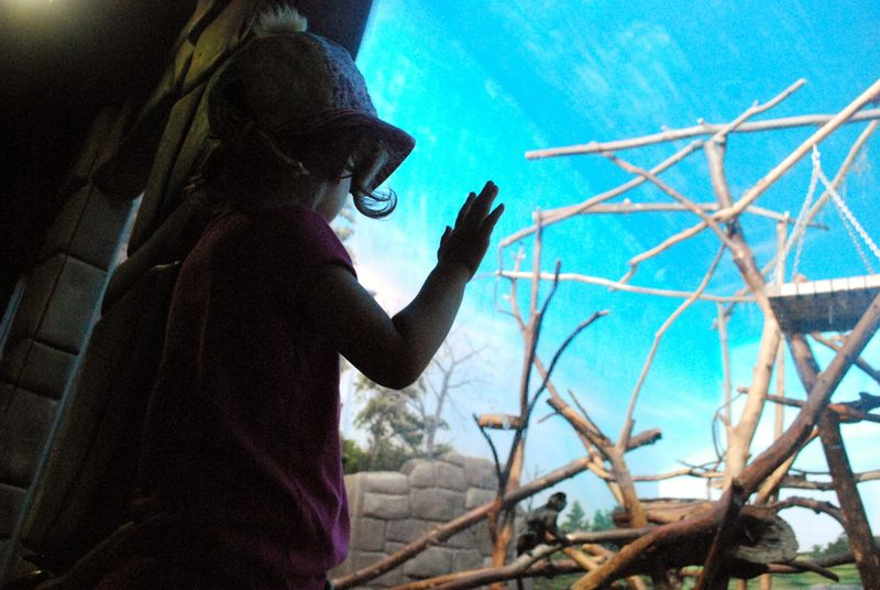 Granby Zoo 3