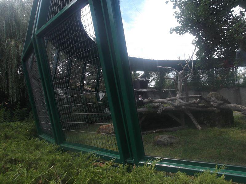 Granby Zoo 7