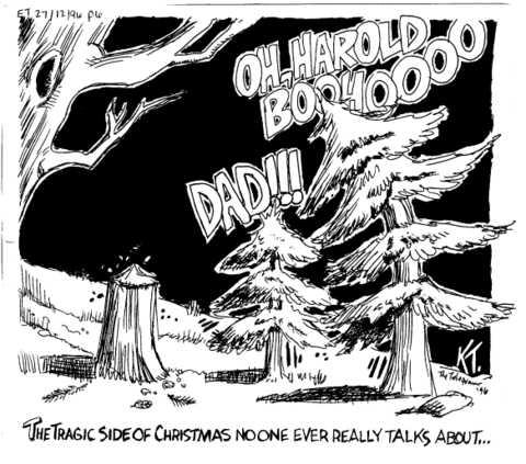 Christmas_tree_cut_down