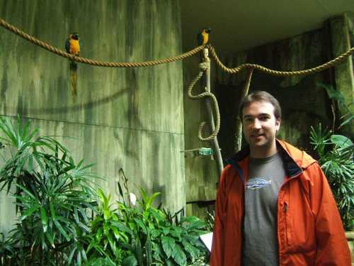 Derek_macaws